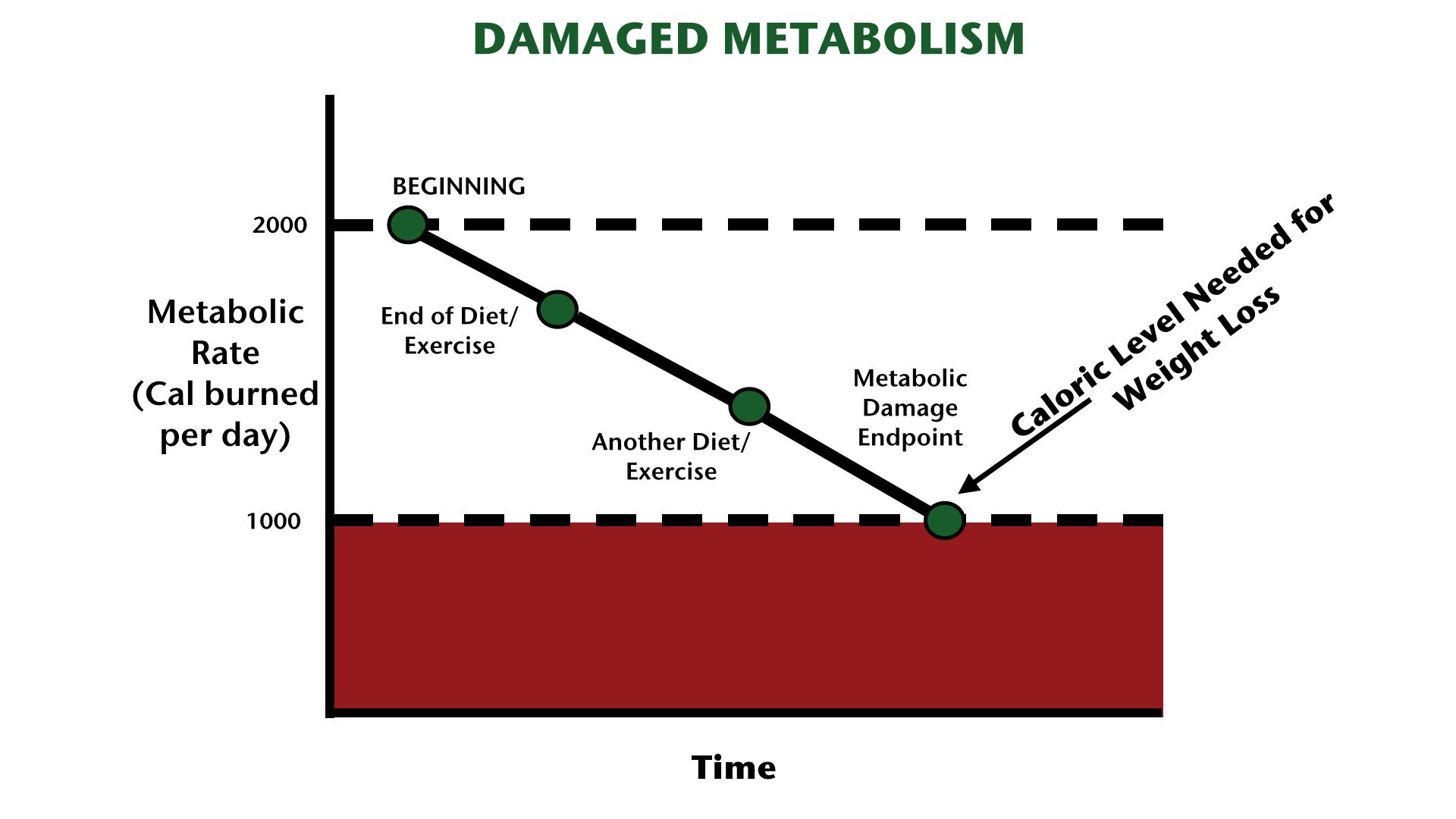 Какво е метаболитно увреждане и как да се справим с него?