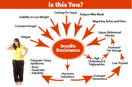 Какво синтизираме за добра инсулинова чувствителност Кирил Танев