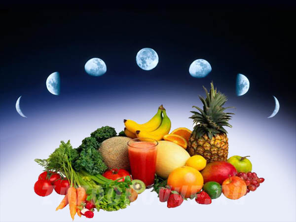 Що е то лунна диета?